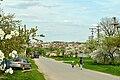Велика Лука - Автошлях С201508 «Хатки — Мишковичі» - 14044739.jpg