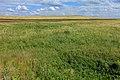 Вид в восточном направлении - panoramio (20).jpg