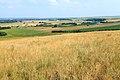 Вид с горы Брагина в юго-восточном направлении на горы Шагиртау (в центре) и Уртатау (правее) - panoramio.jpg