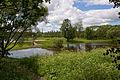 Лето в Петергофе. Орлиный Нижний пруд в Озерковом парке. Вид на мост-плотину Орлиного Верхнего пруда..jpg