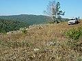 На вершине горы 878 м - panoramio.jpg