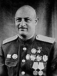 Нельсон Георгиевич Степанян.jpg