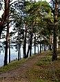 Озеро Алмазне 10.jpg
