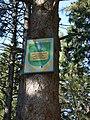 П*ятничанський парк 3.jpg