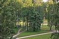 Пискарёвский парк с балкона.jpg