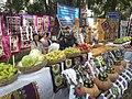 "Праздник ""Мехргон"" г. Душанбе 20.jpg"