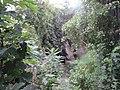 Природни споменик Миоценски спруд Ташмајдан 002.JPG