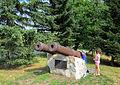 Пушки Бийской крепости.jpg