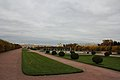 Сад Верхний (Санкт-Петербург и Лен.область, Петергоф, Верхний сад).JPG