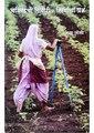 चांदवडची शिदोरी स्त्रियांचा प्रश्न (Chandvadchi Shidori Striyancha Prashna).pdf