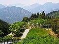 寒溪呢森林人文叡地 Hanxini Forest ^ Humanities Park - panoramio (1).jpg