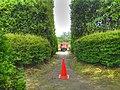 平岡樹芸センター(Hiraoka arboriculture center) - panoramio - t-konno (2).jpg