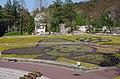 """花の文化園 装飾花壇 Flower bed in """"Hana-no-bunkaen"""" 2014.4.01 - panoramio.jpg"""