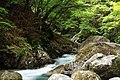 西沢渓谷 - Nishizawa ravine - panoramio.jpg
