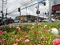 0305jfOrtigas Avenue Santolan Road Streets Landmarks San Juan Quezon Cityfvf 12.jpg