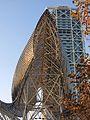 078 Peix de Frank Gehry i Hotel Arts.JPG