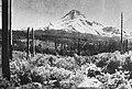 105 Barlow Road Mt Hood 1900's (36042516372).jpg
