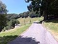 12 August 2016 - Valle di Muggio 19 33 01 164000.jpeg