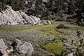 170823 Paiute BenDitto©-237 (37456985605).jpg