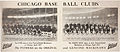 1917 Chicago Baseball Clubs.jpg