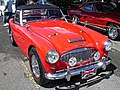 1959 Austin-Healey (10087702764).jpg