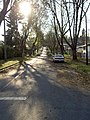 19th Gladstone 02 - panoramio.jpg