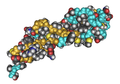 1EMO APairOfFibrillinCa2 BindingEGF-LikeDomains02.png