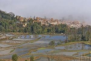 Yuanyang County, Yunnan - Image: 1 yuanyang rice terrace qingkou 2012
