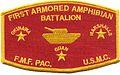 1st Armored Amphibian Battalion.jpg