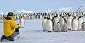 2007 Snow-Hill-Island Luyten-De-Hauwere-Emperor-Penguin-30.jpg
