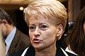 2009 m. Respublikos Prezidento rinkimai Dalia grybauskaitė 16.jpg