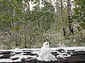 2013-09-26 16 56 01 An early autumn snowfall on Aspens and a little snowman on a bench along the Changing Canyon Trail in Lamoille Canyon, Nevada.jpg