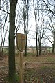 2013-12-23 — Dingspelerberg – Dijkerhoek (Markelo, Hof van Twente) - 02.jpg