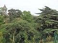 2015-05-29 Paris parc 16.jpg