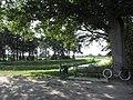 2020-08-18 — zitplaats bij Buurserbeek ter hoogte van Fondsche brug, Rietmolen.jpg