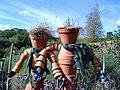2 flowerpot men - Rosemoor Gardens - geograph.org.uk - 246999.jpg