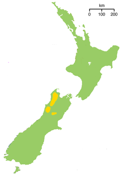 Range of the Great Spotted Kiwi