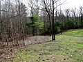 5 acre looking Southeast (4470662772).jpg