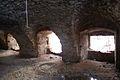 641viki Ruiny zamku w Pankowie. Foto Barbara Maliszewska.jpg