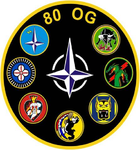 80th Operations Group gaggle patch.png