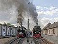 99 7243-1, Germany, Saxony-Anhalt, Gernrode Railway station (Trainpix 185554).jpg