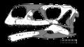 Aardonyx skull.png