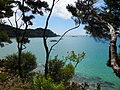 Abel Tasman trail, National Park, South Island, New Zealand - panoramio (3).jpg