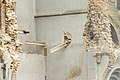 Abriss Immerather Dom, St. Lambertus-7153.jpg