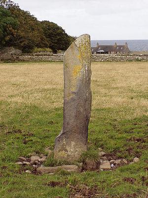 Ackergill - Standing stone at Ackergill Mains farm