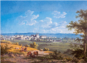 Donaueschingen - The town of Donaueschingen in 1827