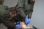Advanced Casualty Sustainment Care-005 (24832192800).jpg