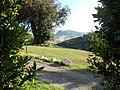 Agriturismo il Pratone (Montegemoli) - panoramio (3).jpg