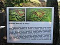 Alba Carolina Fortress 2011 - Francisc De Paola Ravelin Sign-1.jpg
