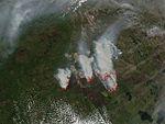 Alberta Wildfire 2016-05-24 MODIS.jpg